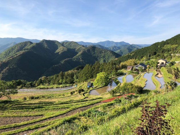 Kumano Kodo rice terrace homes
