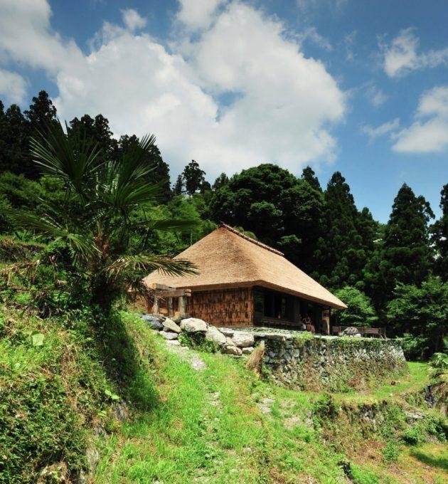 Chiiori in Shikoku Japan