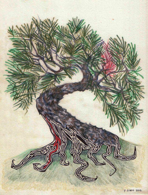 Kyoto Journal - Tree