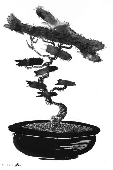 Ink painting of bonsai tree