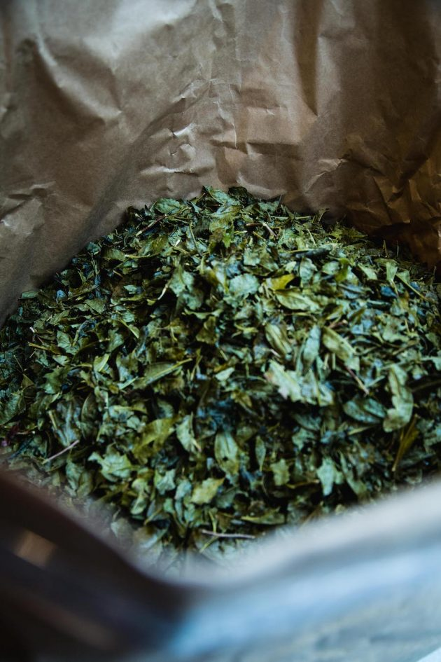 Nakagawa Seiseido green tea sencha Japanese Shiga Otsu