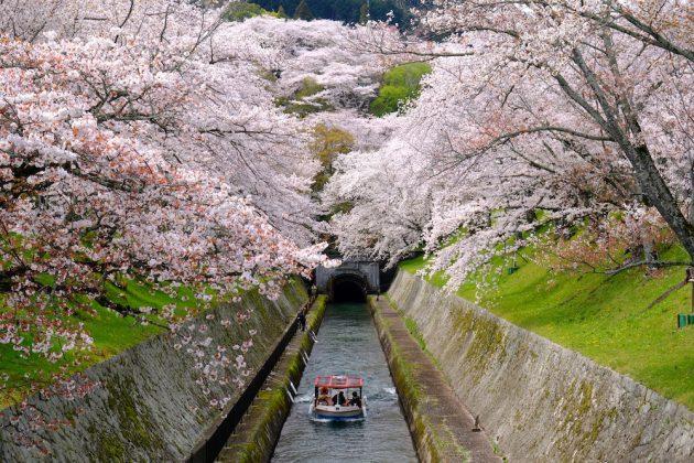Shirakawa Canal Stuart Gibson Photography